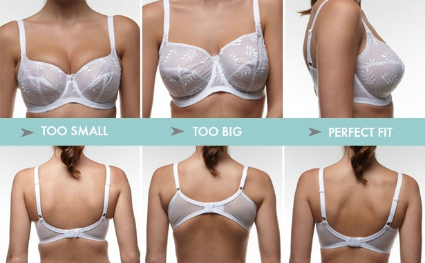Bra Fitting Guide | Confetti.co.uk