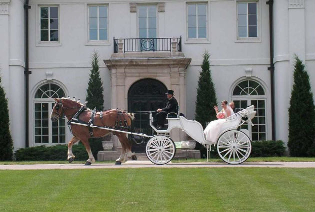 horse and carriage by austenacious.com