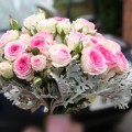 Pink rose and scenecio wedding bouquet