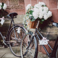 Mr & Mrs Bicycles