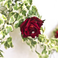 Budding Sensations Artificial Red Flower and Ivy