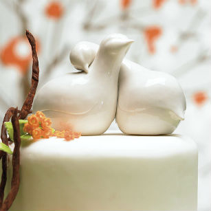 Contemporary love birds cake topper at Confetti