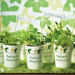 Mini flower pot favours