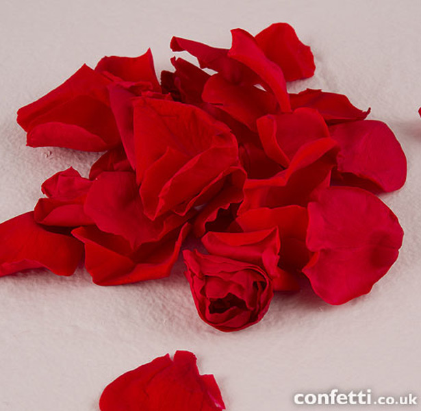 Natural red rose flower petal confetti