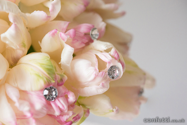 Pink and Cream Flowers
