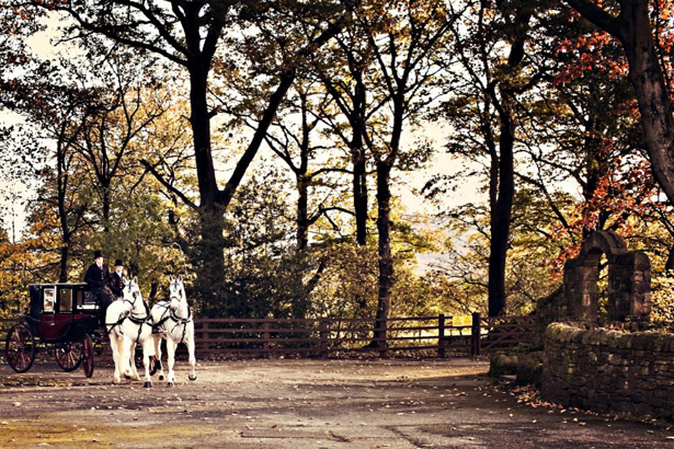 Styling Autumn Wedding | Real Wedding Autumn Wedding Transport | Vantage Horse and carriage|Confetti.co.uk