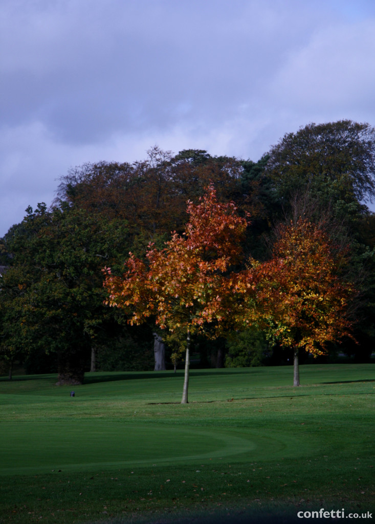 Autumn at Breadsall Priory is a stunning display of colours. | Confetti.co.uk