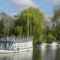 The Swan at Streatley boat and riverside venue
