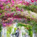 DARREN & NICOLA-Silk Blooms and arbour