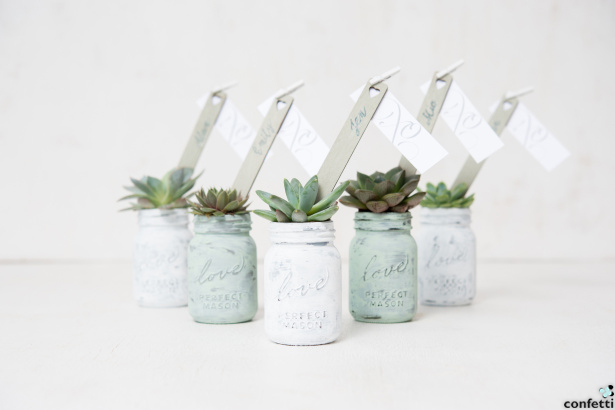 Succulent Favours | Confetti.co.uk