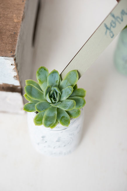 White and Green Wedding Succulents   Confetti.co.uk