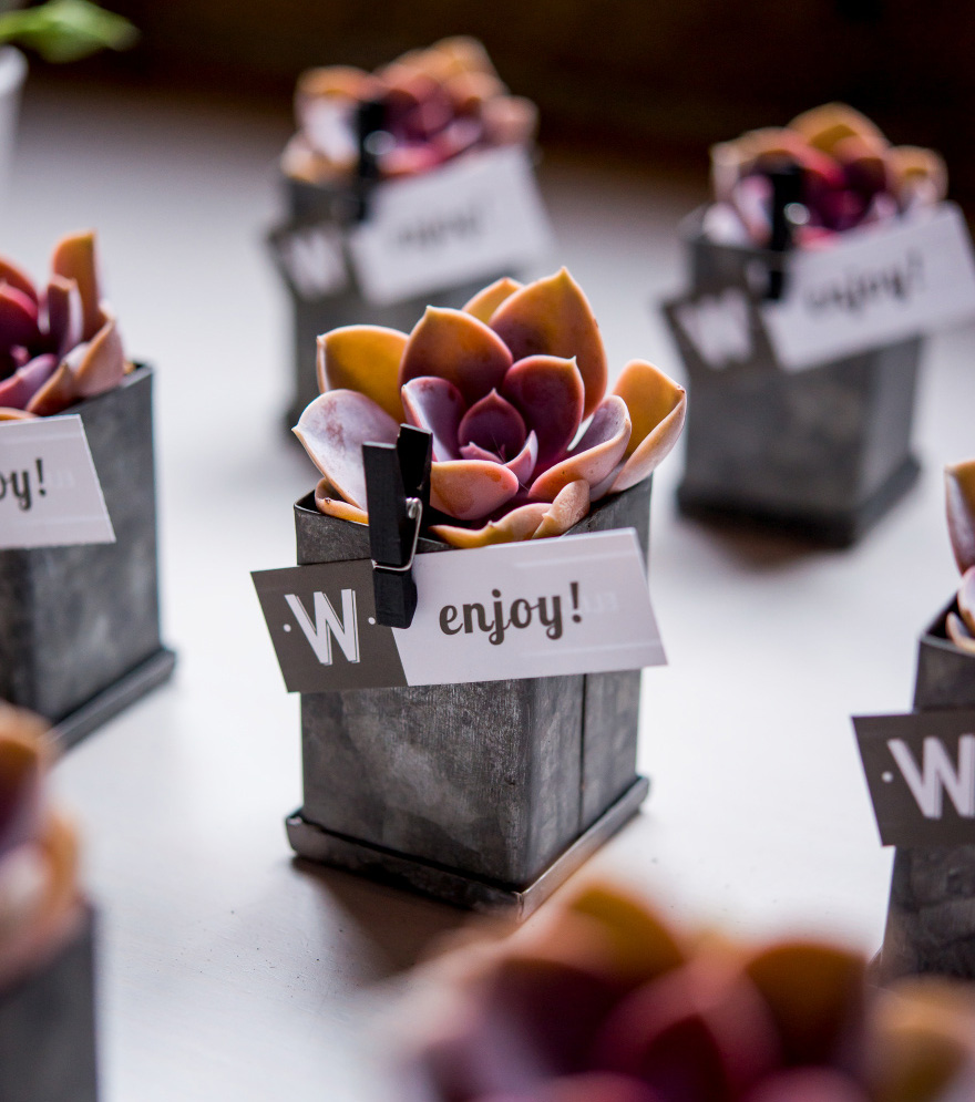 Small Tin Favour Box with Grey Aged Finish - Industrial Wedding Favours - Succulent Wedding Favours   Confetti.co.uk