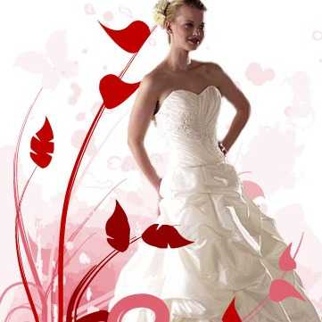 Strides Wedding Specialists